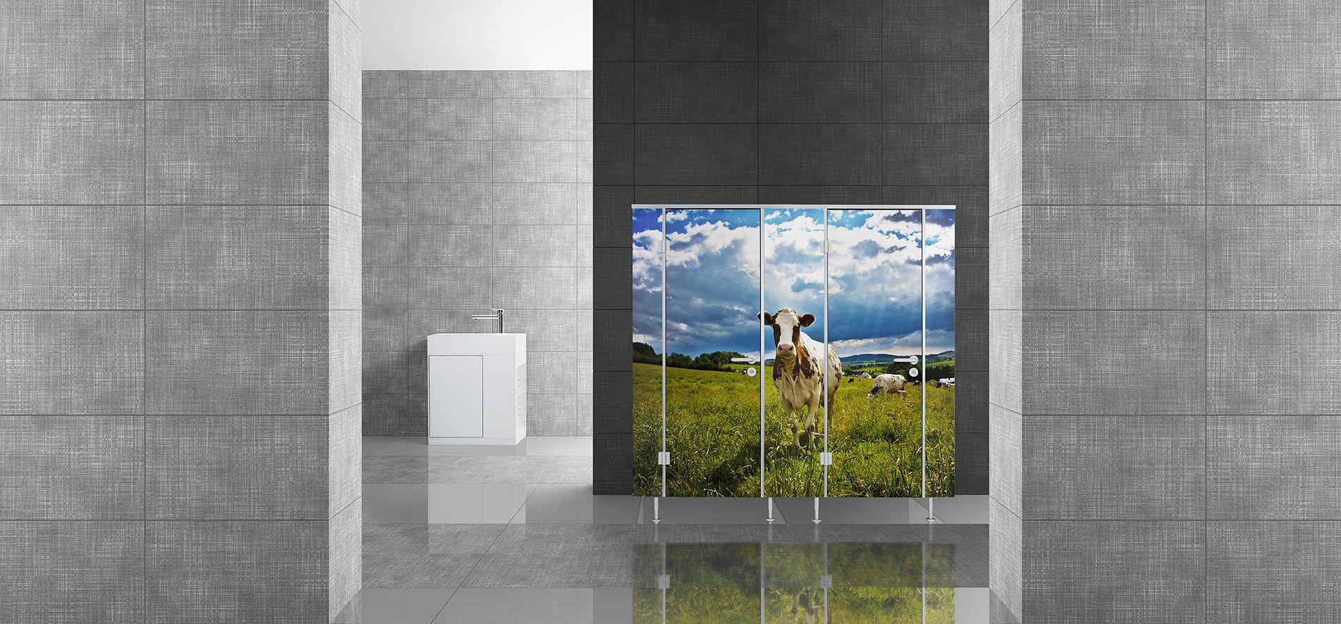 wc-trennwand-design-trennwandsystem-foto-wc-trennwand-selber-gestalten-trennwandsystem-motiv